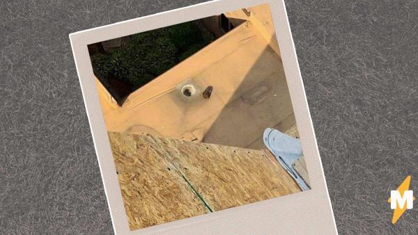 Чем дольше смотришь, тем страшнее. Плотник показал стройку и напугал людей - для такой работы нужно бессмертие