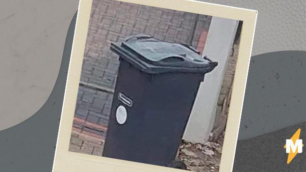 Люди увидели летающий мусорный бак и поверили в его реальность. Их не переубедило даже объяснение иллюзии