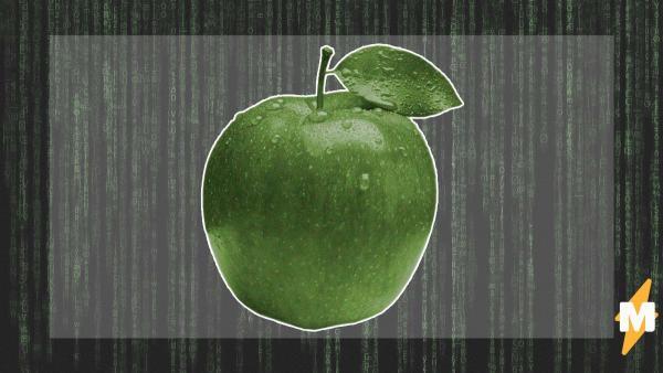 Парень снял баг с яблоком и доказал - мы в симуляции. Но настоящие программисты показали, как отладить матрицу