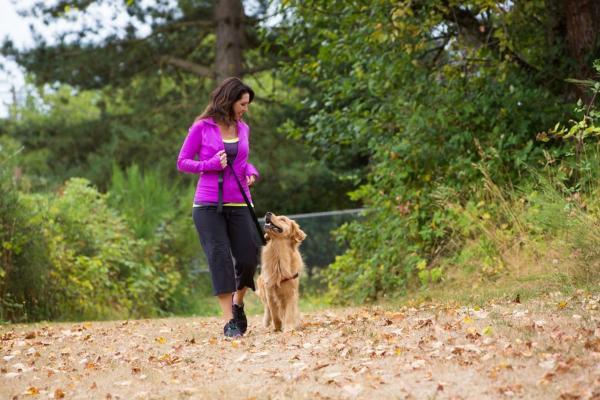 Женщина боялась собак, но решила приютить пса с похожей фобией. И не прогадала, ведь они спасли друг друга