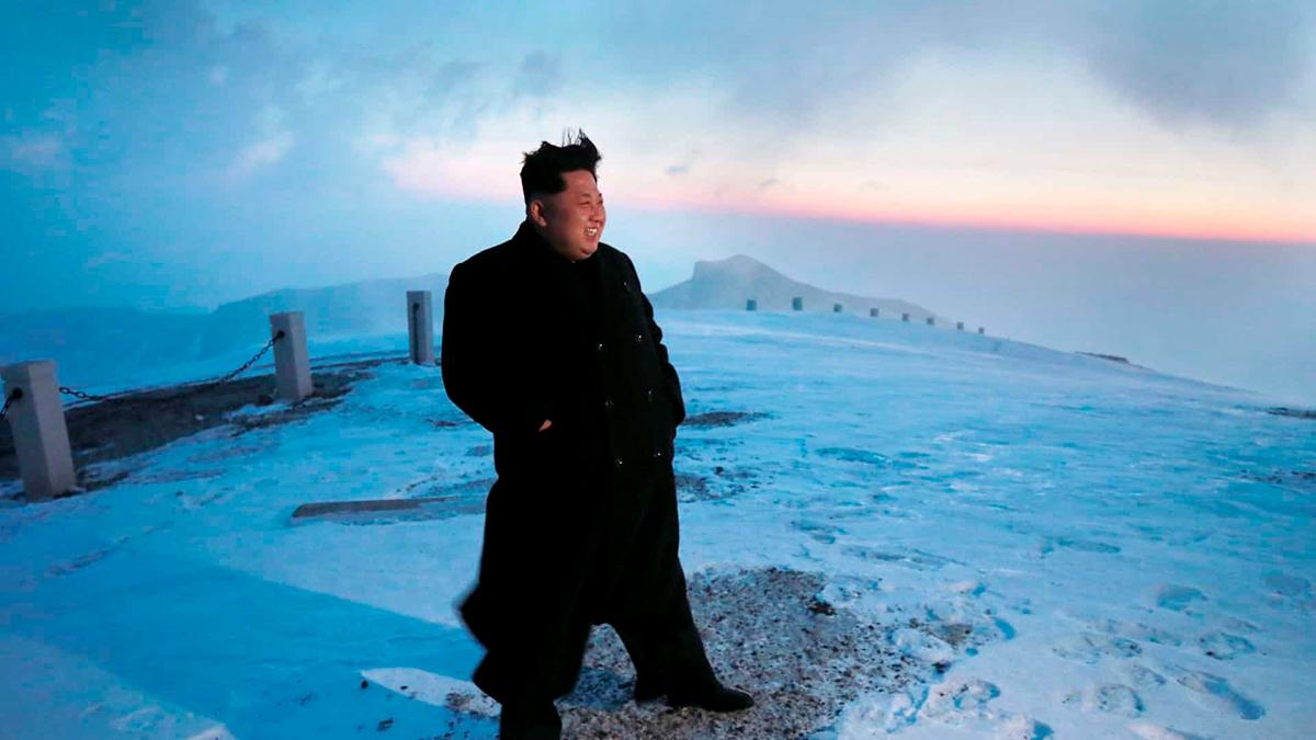 Ким Чен Ынввегетативном состоянии— Японские СМИ