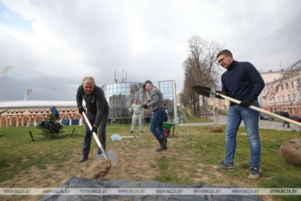 Лукашенко сажает сосны в Чернобыле, несмотря на пандемию. Судя по видео, дистанцию там никто не соблюдает