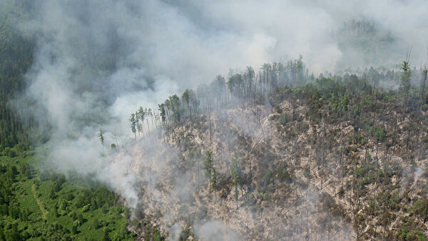 Учёные напророчили Сибири очередное лето в огне. Региону грозят «пожары-зомби» – и они ещё коварнее обычных