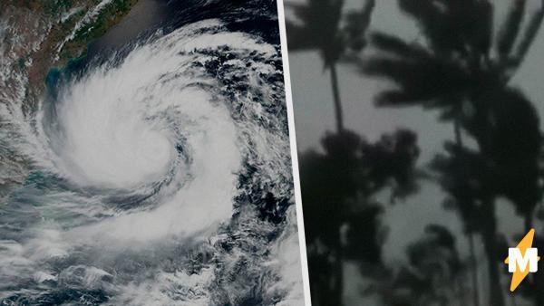 """На Индию и Бангладеш обрушился циклон """"Амфан"""". Судя по видео, он настолько сильный, что легко сдвигает автобус"""