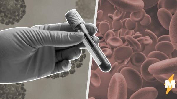 Медики рассказали, кто в России чаще всего болеет коронавирусом. Самое время вспомнить свою группу крови