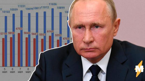 После речи Владимира Путина статистика COVID-19 пошла на спад. Люди уверены – слова президента победили заразу
