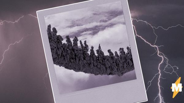 Люди увидели, что бывает, когда молния бьёт в песок. Земля превращается в монстра прямиком из ночных кошмаров