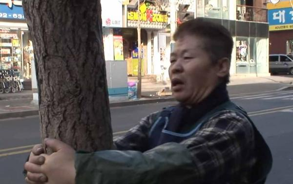 Кореец хочет, чтобы с ним не связывались, и желающих нет. Ведь он пять лет ежедневно бьётся головой об дерево