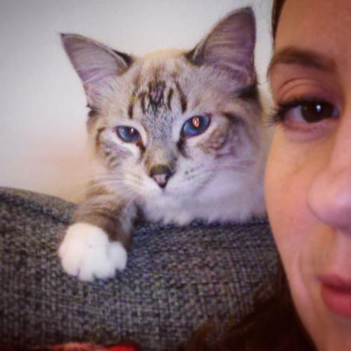 Девушка подобрала на улице почти слепого котёнка. И его вид через полгода - лучшая награда за спасение