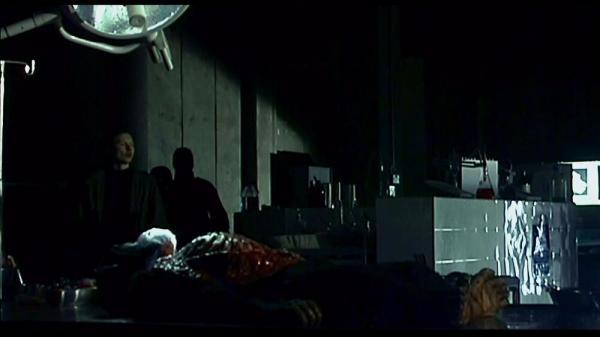 """Обезьяны в Индии напали на лаборанта с образцами COVID-19. И до фильма """"28 дней спустя"""" им осталась одна сцена"""