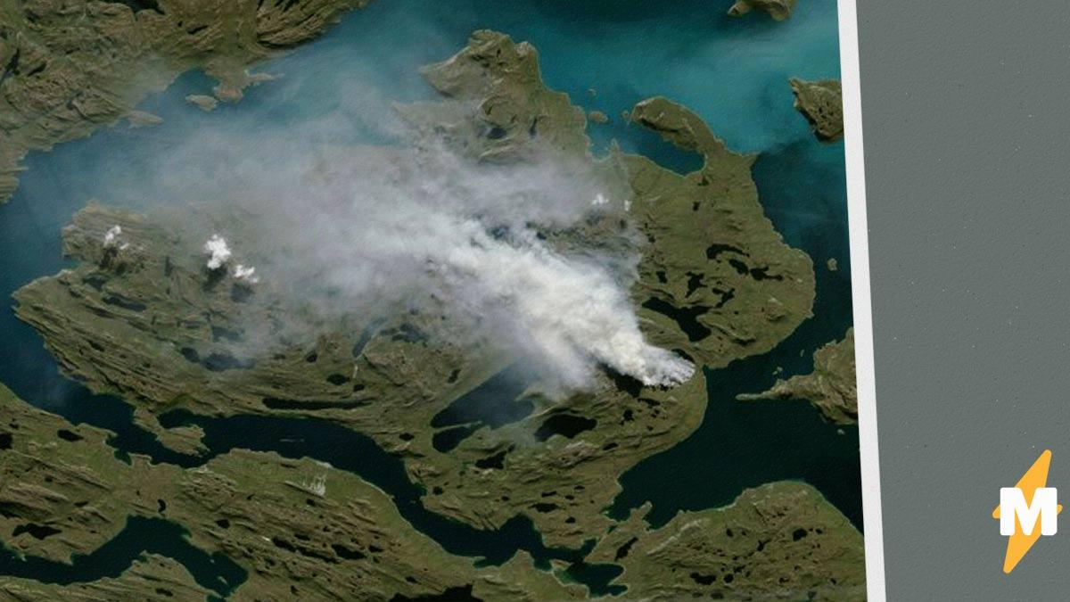 Сибири напророчили очередное лето в огне. Региону грозят «пожары-зомби» – и они ещё коварнее обычных