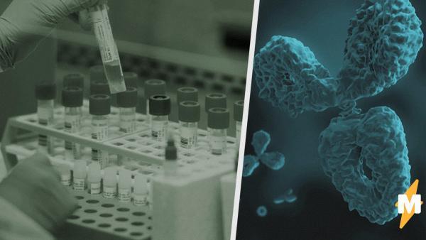 В Москве открылась запись на бесплатный тест на антитела к COVID-19. Записаться на анализ можно через ЕМИАС
