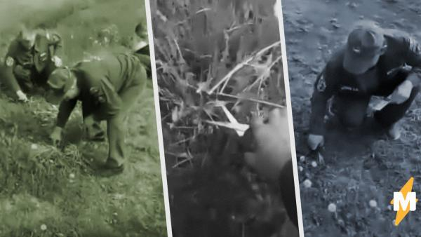 Пожарные в Новосибирске подстригли траву маникюрными ножницами. Троллям смешно, а патриотам – не очень