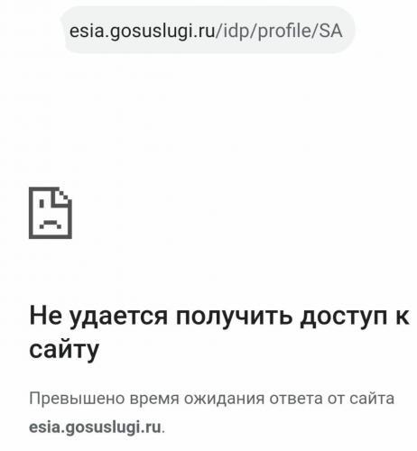 Сайт Госуслуг лёг после обращения Путина. Получить обещанные президентом пособия хочет слишком много людей