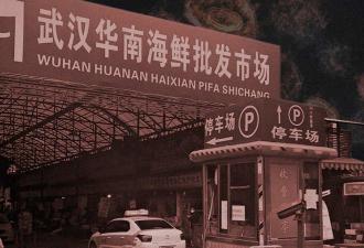Рынок Уханя – не родина COVID-19, а его первая жертва. Вспышку болезни там вызвал загадочный «супер-носитель»