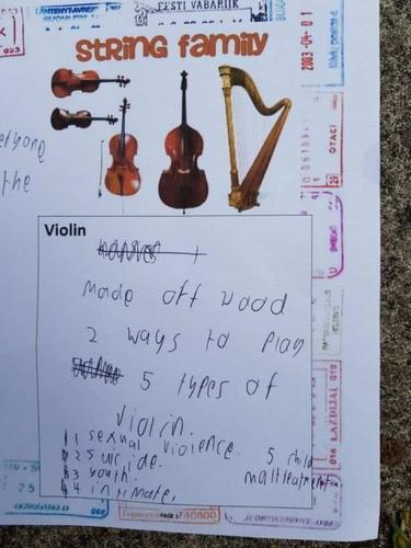 Девочка хотела схитрить с домашкой, но гуглить не умела. И её простой рассказ о скрипке превратился в хоррор