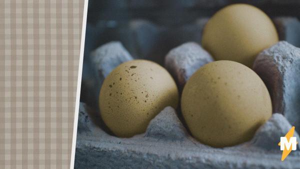 Девушка купила яйца в магазине и доказала: не все из них можно есть. Теперь в её доме на трёх питомцев больше