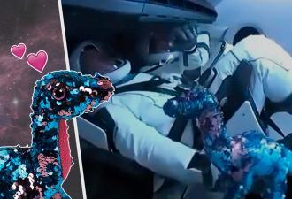 После запуска Dragon Crew все хотят себе детектор невесомости, как у космонавтов. Он сине-лиловый и в блёстках