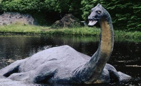 Фото большого создания в Лох-Несс вызвало шутки о знаменитом чудовище. Но самые внимательные нашли подвох