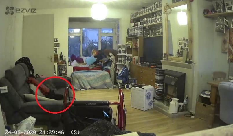 Женщина показала видео, на котором увидела призрак её кота. И ролик заставил людей поверить в паранормальное
