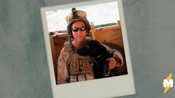 Собачья жизнь до войны и после. Как пёс-ветеран Блу обрёл счастье, пройдя по бомбам Афганистана