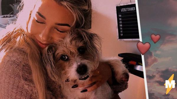 Девушка не могла успокоиться после смерти собаки. Но от слёз не осталось и следа, когда она посмотрела на небо