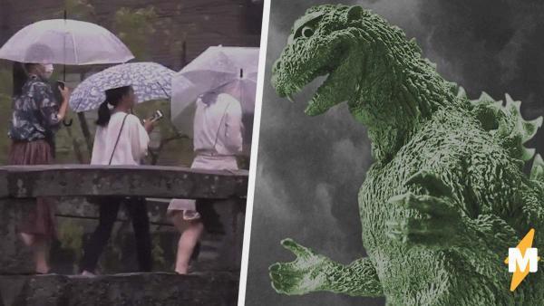 На видео японского прогноза погоды случайно попал динозавр. Людям не смешно, но местные знают секрет