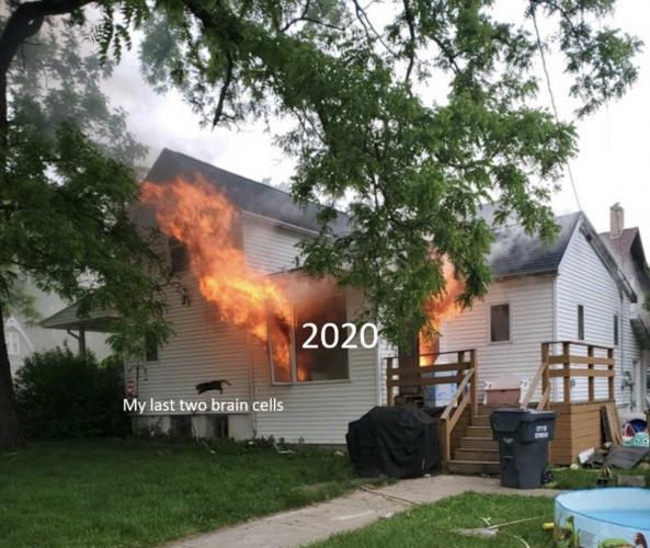 Собаку вынесли из горящего дома, а о кошке забыли. И её отчаянный полёт из окна уже стал мемом