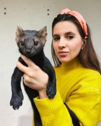 Кот, сурок, норка? Люди гадают над снимком диковинного зверя, но что это за животное знают лишь жители России