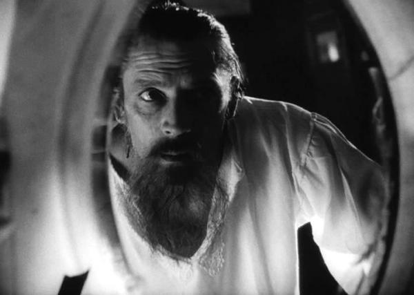 Американцы выяснили, что к протестам их призвал Лев Толстой. Оказалось, книги писателя скрашивали им карантин
