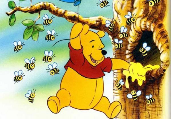 Парень накормил пчелу мёдом, и это сразило людей наповал. Их жизнь была обманом, возможно, и ваша тоже
