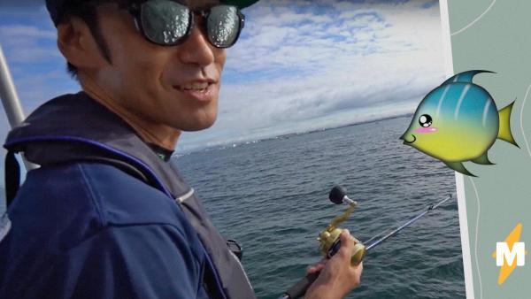 Рыбак использовал в качестве приманке аниме-фигурку, и осьминоги оценили. Это готовый сюжет для фетиш-ролика