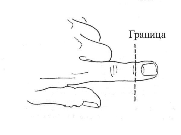 Что делать с выбитым зубом и отрастёт ли обратно отрезанный палец. Регенерация - не только для Доктора Кто