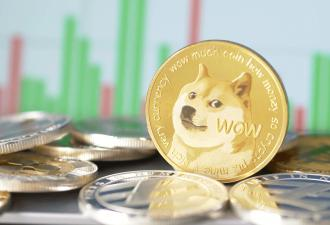Мемный пёс сделал подростков богаче за считанные часы. И помог им в этом TikTok и догекоин