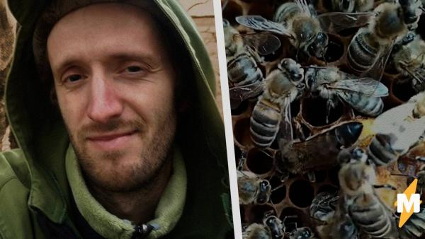 """""""Мне аж дышать трудно стало"""". Пчеловод из России показал трюки с пчёлками, и у людей кровь стынет в жилах"""