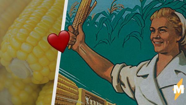 В России отмечают День кукурузы. А это не только национальное торжество, но и праздник мемов, покрытых тайной