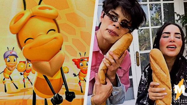 Песня пчёлок Miel Pops воскресла мемом о ламах и танцах с хлебом. Ведь испанцы неправильно её услышали