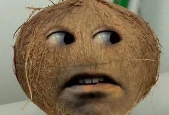 Что получится, если отполировать кокос. Ответ найден: идеальный реквизит для пранка и миллион вопросов