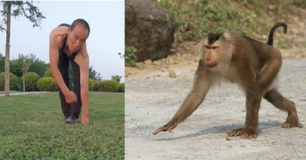 Мужчина занимается спортом и становится макакой. Это не оскорбление: косплей примата - путь к идеальному телу