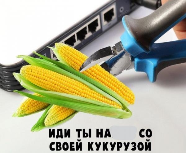 В России празднуют День кукурузного початка. Но это не только национальное торжество, но и праздник мемов