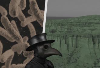 Монголия ввела карантин из-за вспышки бубонной чумы. Людям страшно, но есть выход – маска из Средневековья