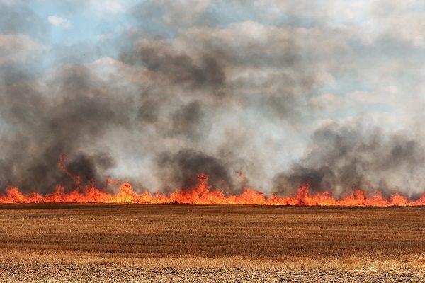 Пожарные прибыли на вызов и поверили в высшие силы. В самом центре пожара остался не тронутым памятник девочке