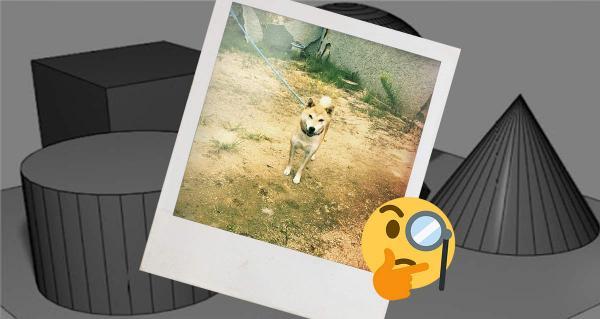 Хозяин показал кривую 3D-модель своей собаки, но есть загвоздка. На самом деле это настоящий пёс без обработки
