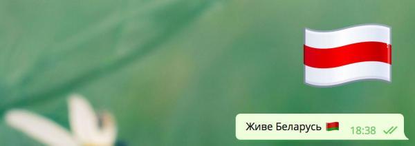"""""""Я/Мы батька"""", война стикеров и диверсия Павла Дурова. Как фанаты Лукашенко воюют с оппозицией в интернете"""