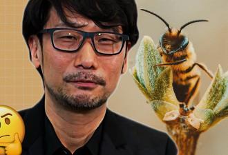 Спайдермен обязан всем пауку, а Кодзима - пчёлам. Геймеры слепили околомем о разрабе, а всё из-за его работы
