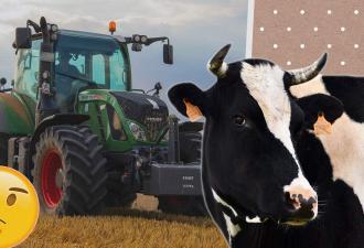 Фермер скрестил корову с трактором, чтобы молоко доилось само. Это стимпанк, которого бурёнка не заслужила