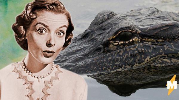 Люди увидели, как на самом деле плавают крокодилы под водой. Итог: плюс поводов для смеха и минус одна фобия