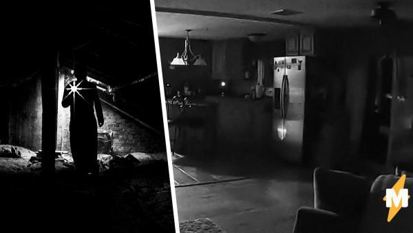 Люди посмотрели видео мужчины и потеряли сон. Только на первый взгляд кажется, что в ролике только собака