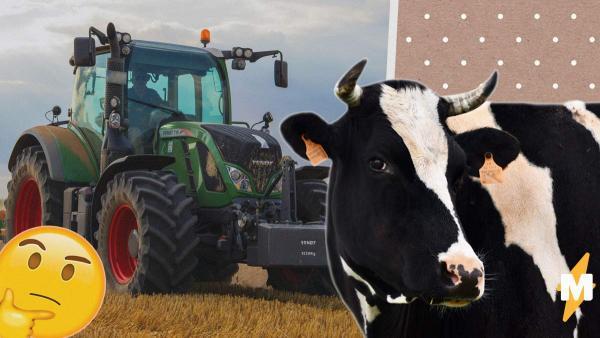 Фермер скрестил корову с трактором, чтобы молоко доилось само. И это стимпанк, которого бурёнка не заслужила