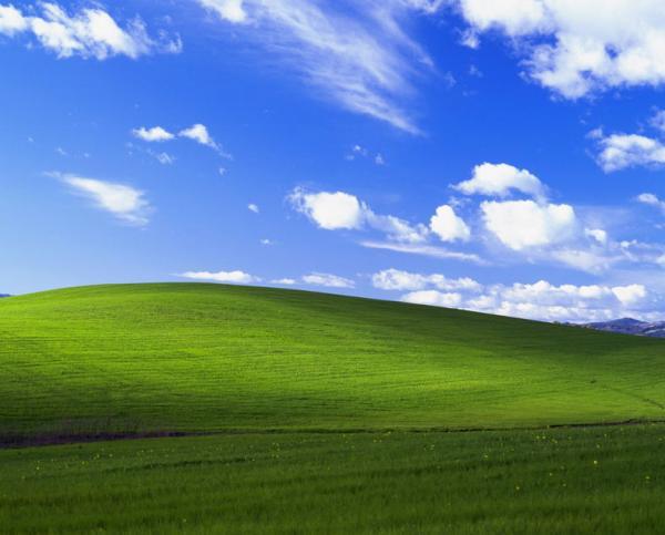 Почувствуйте себя старыми. Игрок в Microsoft Flight Simulator долетел до заставки Windows XP, но её не узнать.